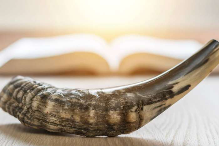 Shofar in front of an open book