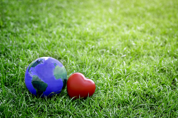 earth and a heart on the grass