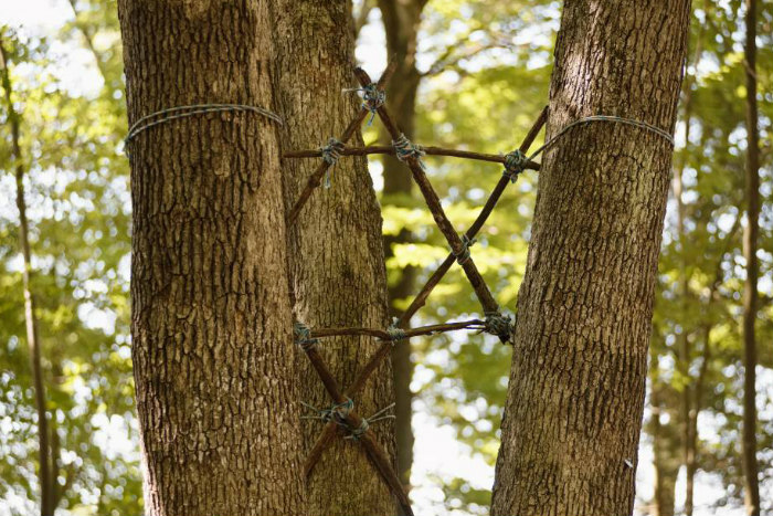 Star of David made of twigs and tied between two tree trunks against green foliage