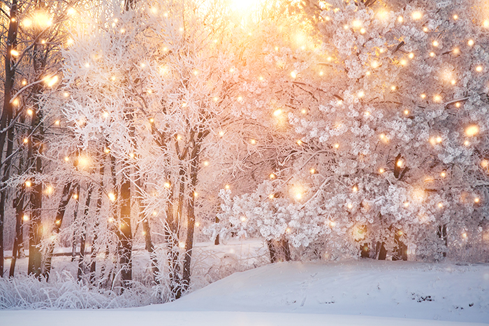 winter scene with lights