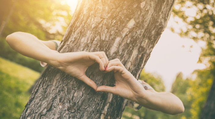 Arms hugging the trunk of a tree with the hands coming together to form a heart shape in front of it