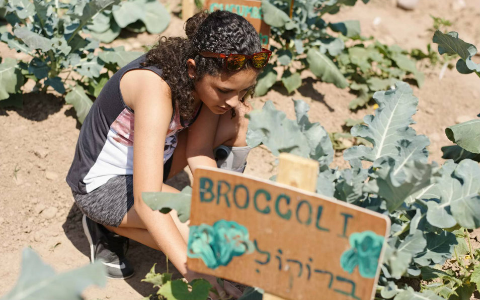Young woman planting broccoli