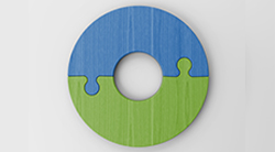 Disk that is half blue and half green