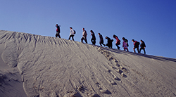 People walking up a hill in the desert