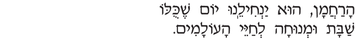 yom-shekulo-shabbat.jpg
